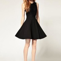 Black Fit & Flare Dress with Lace Back Detail