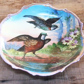 Austria Victorian Plate, Pheasant or Game Birds, Nature Art, Decorative, Birds, Collect, Home Decor, Serving