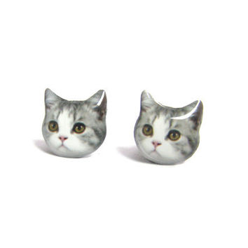 Cute Grey and White Cat Kitten Stud Earrings - A14E84