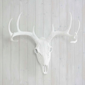 The White Faux Deer Head Skull