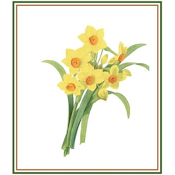 Daffodil Flowers Inspired by Pierre-Joseph Redoute Counted Cross Stitch Pattern