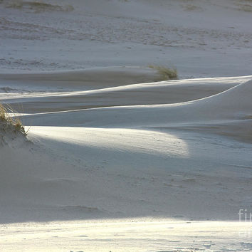 Rolling Dune Forms by Jan Brons
