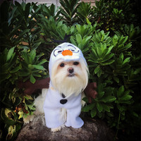 Adorable Snowman Dog Halloween Costume (Looks like walking from front!)