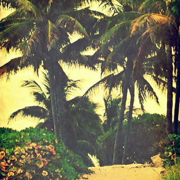 Peaceful Palm Tree Lined Beach Path Art Print - Beach Photography - Vintage Inspired Retro Surfer Chic Vibe