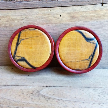 Chakte Kok Plug Pair with Black & White Ebony Inlay | 1 3/4""