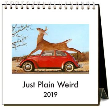 2019 Just Plain Weird Easel Desk Calendar
