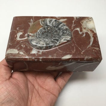 "624g, 5""x3""x2"" Rectangular Fossils Ammonite Red Jewelry Box @Morocco, MF656"