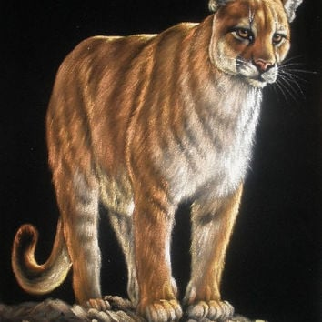 Wild cougar black velvet oil painting handpainted signed art