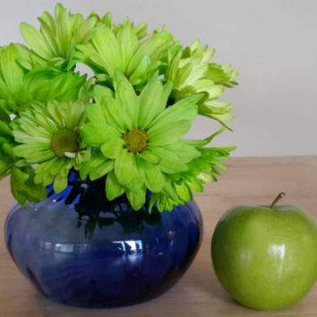 Blue Glass Vase / Cobalt Flower Vases  Free US Shipping