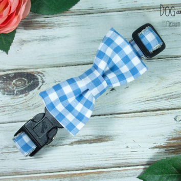 Blue Gingham Dog Collar with Removable Bow Tie