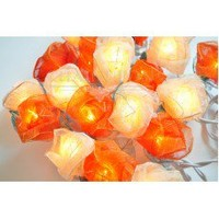 Orange and White Roses Flowers String Lights