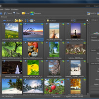 Zoner Photo Studio 18.2 Crack License Code