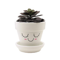 Succulent Planter, Terracotta Pot, Cute Face Planter, Air Plant Holder, Plant Pot, Flower Pot, Indoor Planter, Succulent Pot, White Planter