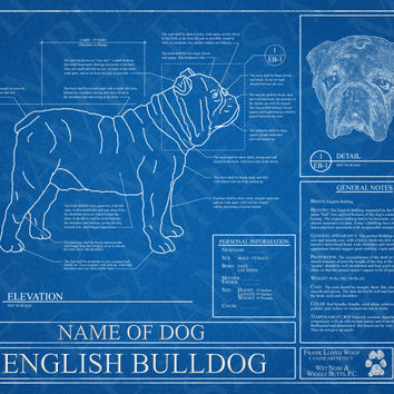 Customized English Bulldog Blueprint / English Bulldog Art / English Bulldog Wall Art / English Bulldog Poster / English Bulldog Print