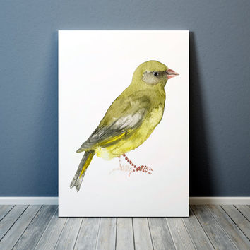 Nursery art Greenfinch print Cute bird watercolor ACW102