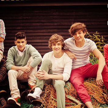 One Direction 1D Band Poster 11x17