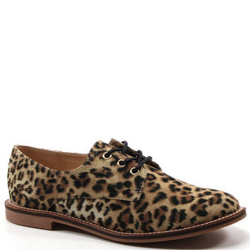 LUICHINY Leopard Oxford