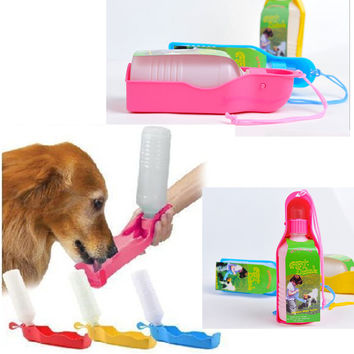 Cute Portable Fold-able Plastic Feeding Dog Bowl