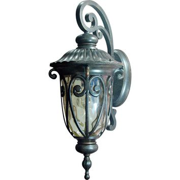 Viviana  Antique Styled 1 Light Exterior Lighting in Oil Rubbed Bronze