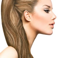 """18"""" Clip In Hair Extensions: No. P6-27 Chestnut Brown/ Blonde"""