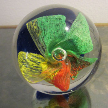 Orchid Rainbow Murano Glass Bubble Paperweight