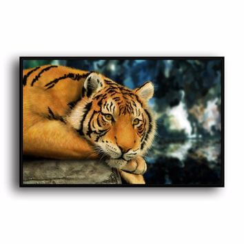 SR--0487 Bengal Tiger Natural Scenery Animal. HD Canvas Print Home decoration Living Room bedroom Wall pictures Art painting