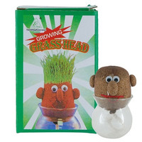 DIY Your Own Grass Head (Green)