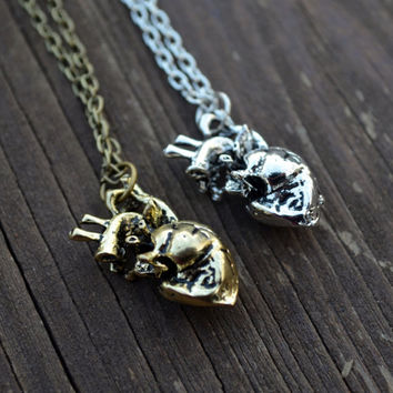 Anatomical Heart Necklace (gold & silver available)