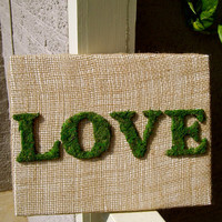 Love Sign, Moss Letter Sign, Burlap Sign, Canvas Sign, Wooden Letter Sign