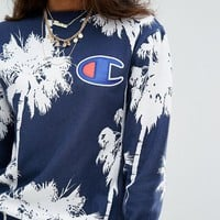 Champion Embroidery round collar sweater thickening sweater