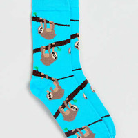 Sloth Motif Socks - New This Week - New In