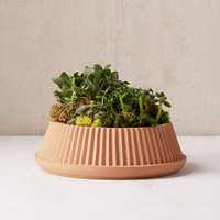 Umbra Shift Pleated Succulent Planter | Urban Outfitters