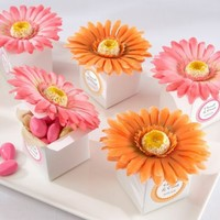 kateaspen Daisy Delight Gerbera Daisy Favor Box, Bright Orange $22.44