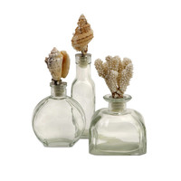 Shell Stopper Glass Bottles, Set of 3