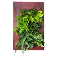 "24"" Cherry Wall Mounted Planter, Seeds & Growing Kits"