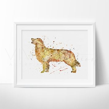 Golden Retriever Dog 2