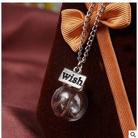 Breasted wish hope dandelion immortal dried flower seeds glass cover plant specimen pendants sweater necklace