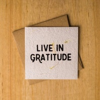 Live in Gratitude Handmade Notecard Set