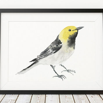 Hermit warbler print Cute nursery art Bird watercolor ACW137