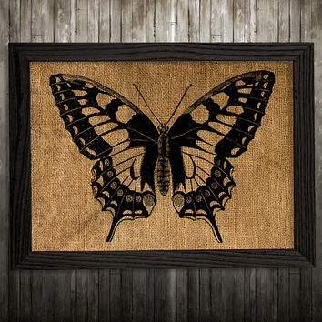 Insect print Butterfly poster Wildlife art Burlap print BLP383