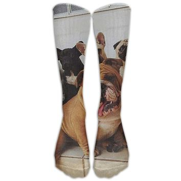 French Bulldog Novelty Cotton Knee High All-Over Printed Socks