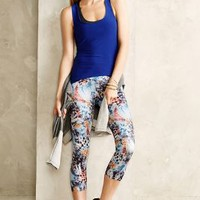 Cropped Featherprint Leggings by Onzie Blue Motif