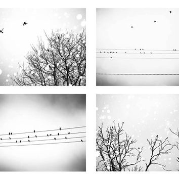 birds photography black white birds in trees photo print set 8x10 8x12 Fine art photography birds on wires decor winter photography gray art