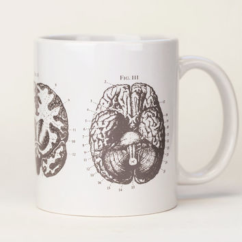 Brain Anatomy Mug | Gray White Ceramic Coffee Mug, Medical Doctor Gift, Neuroscience, Present for Smart Person, Nursing Science Biology Tea