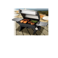 All-Foods Tabletop Gas Grill