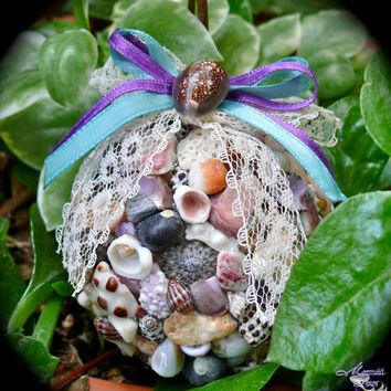 Hawaii Seashell Christmas Ornament - Tropical Hawaiian Christmas, Mele Kalikimaka decor