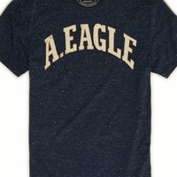 AEO Men's Applique Graphic T-shirt