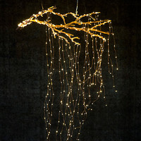 Stargazer Cascade Falls LED String Lights, 7' | Terrain