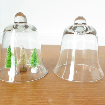 Two small glass cloches or display domes for terrariums, display or crafts
