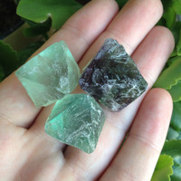 Set of 3 Healing Raw Fluorite Octagons Perfect for Wire Wrapping